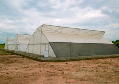 Greenhouse (15)